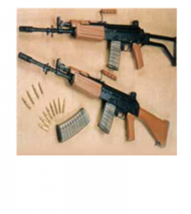 5.56 mm INSAS FAMILY