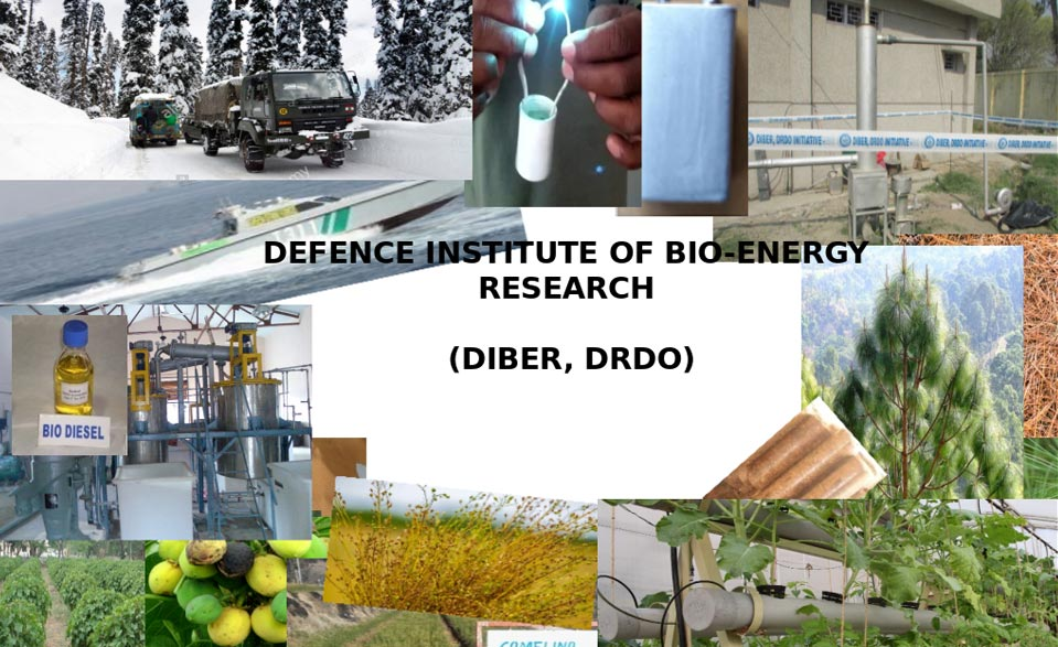 Defence Institute of Bio-Energy Research